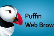 Puffin web browser для андроид на русском скачать